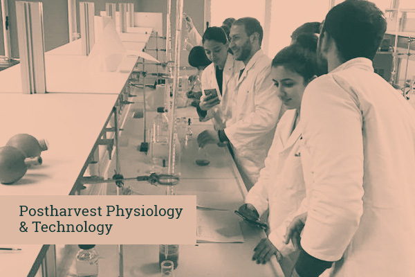Postharvest Physiology & Technology